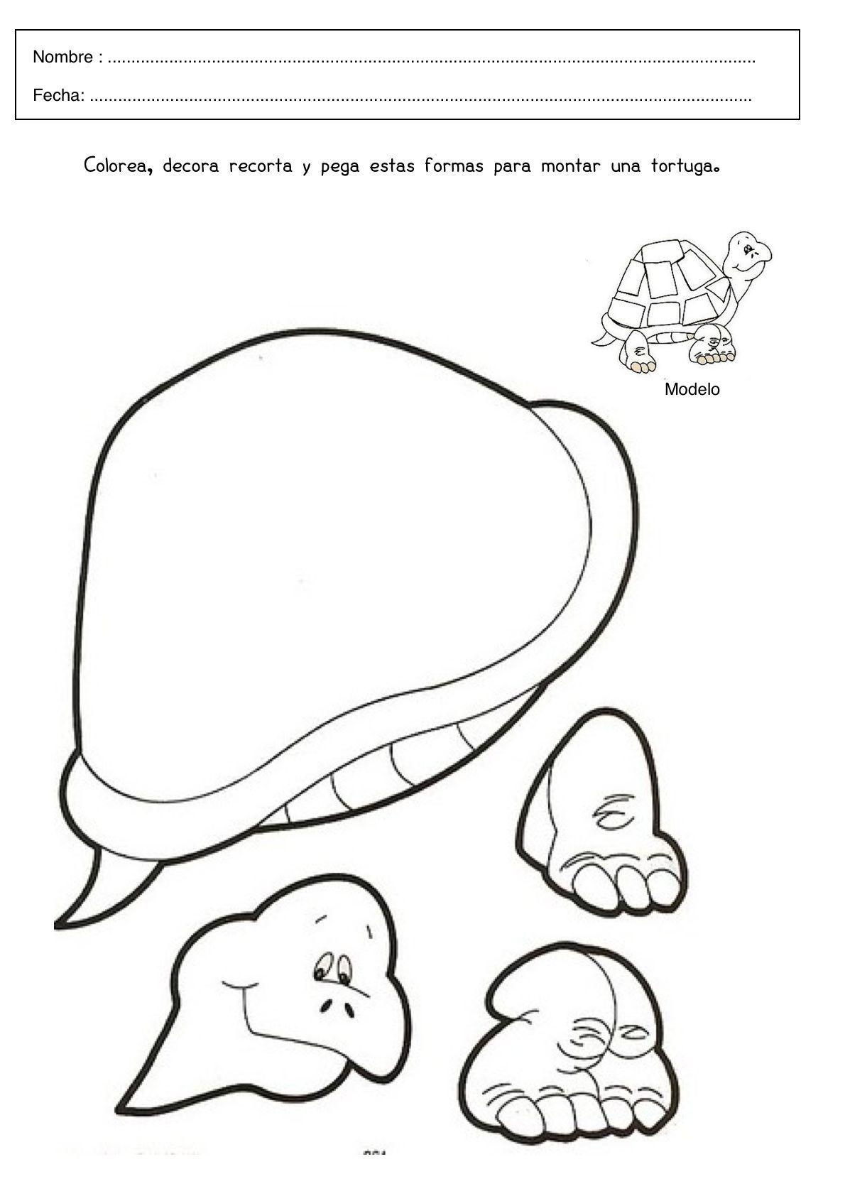Lujo Lindas Tortugas Para Colorear Para Niños Ornamento - Enmarcado ...