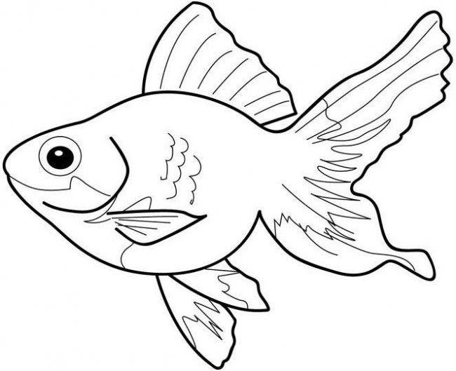 Pecez Para Imprimir: Dibujos-peces-g