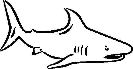 Tiburon B Idibujos