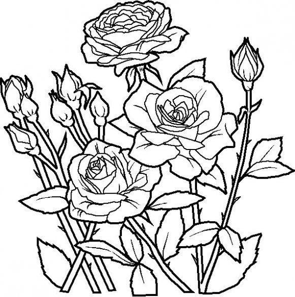 Dibujos De Flores Bonitas Para Colorear